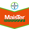 Brand tag MaisTer from Bayer